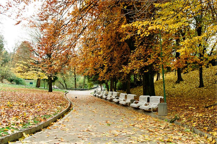 There was autumn © 2009 Alex Nedoviziy