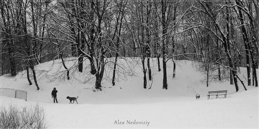 Дама с собачкой ;) - © 2010 Alex Nedoviziy