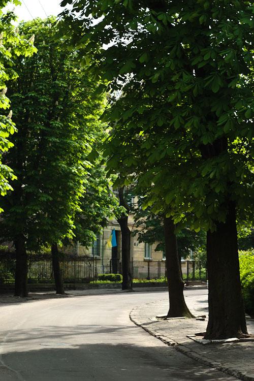 Тихо и спокойно. Львов © 2010 Alex Nedoviziy