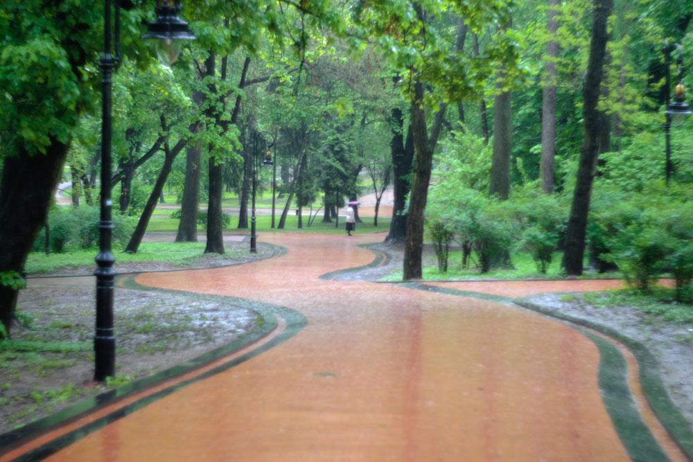 Парковый этюд 1. Львов © 2010 Alex Nedoviziy