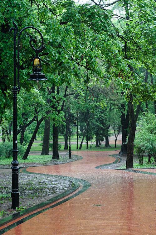 Парковый этюд 2. Львов © 2010 Alex Nedoviziy