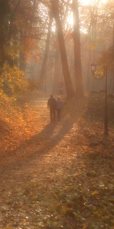 Осенний сон © 2011 Alex Nedoviziy