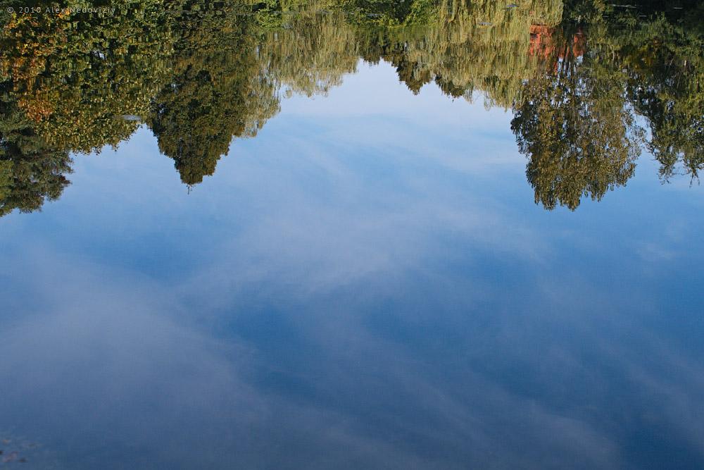 Осень в пруду © 2010 Alex Nedoviziy