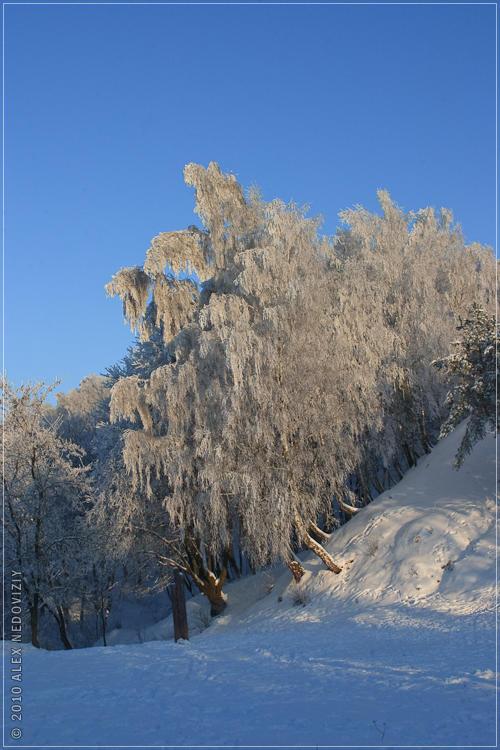 Была зима © 2010 Alex Nedoviziy