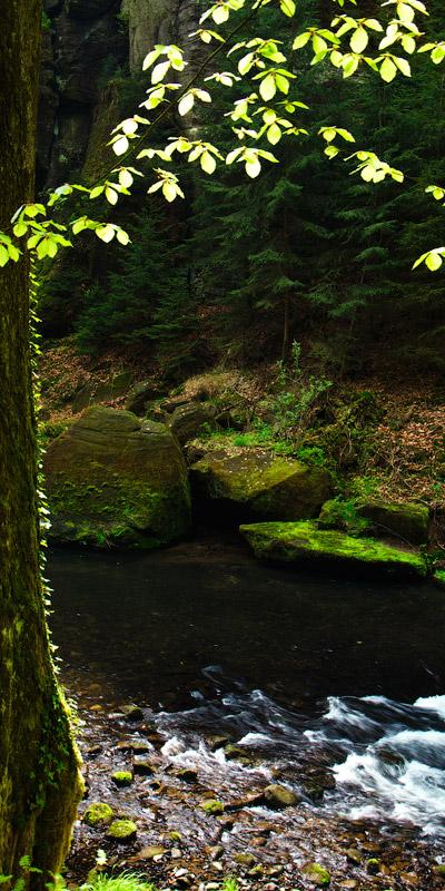 Чехія, національний парк Чеська Швейцарія, річка Каменіце © 2013 Alex Nedovizii