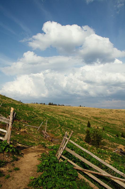 Біля колиби © 2013 Alex Nedovizii