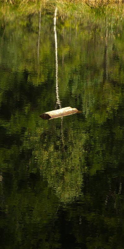 На озері Журавлиному. Сколівський р-н, Львівська обл., Україна © 2014 Alex Nedovizii