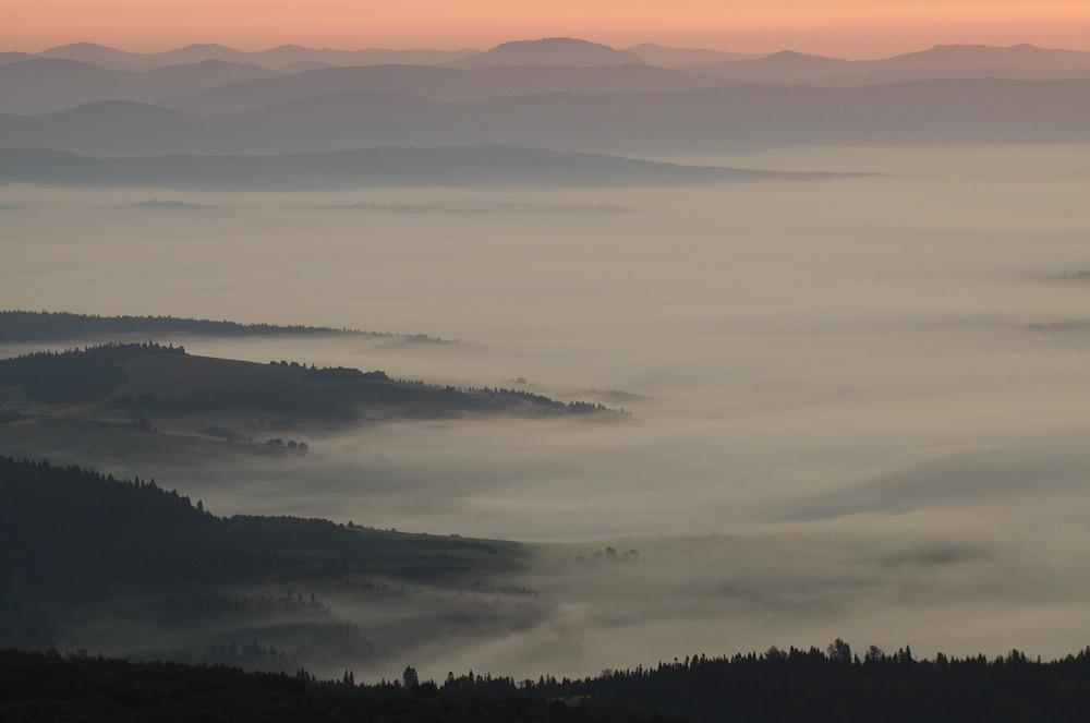 Ранок на Вододільному хребті. Карпати, Україна © 2014 Alex Nedovizii